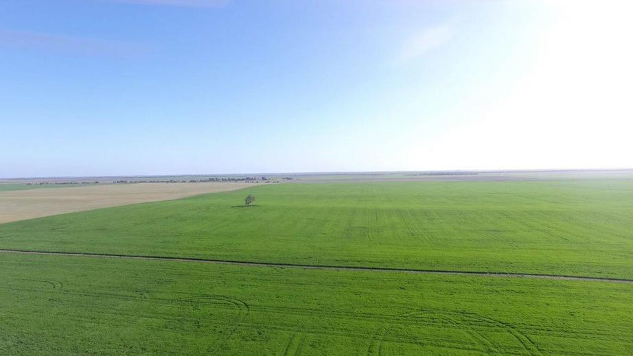 Rural Property & Farms for Sale - 10405 Mallee Highway - Farm Property