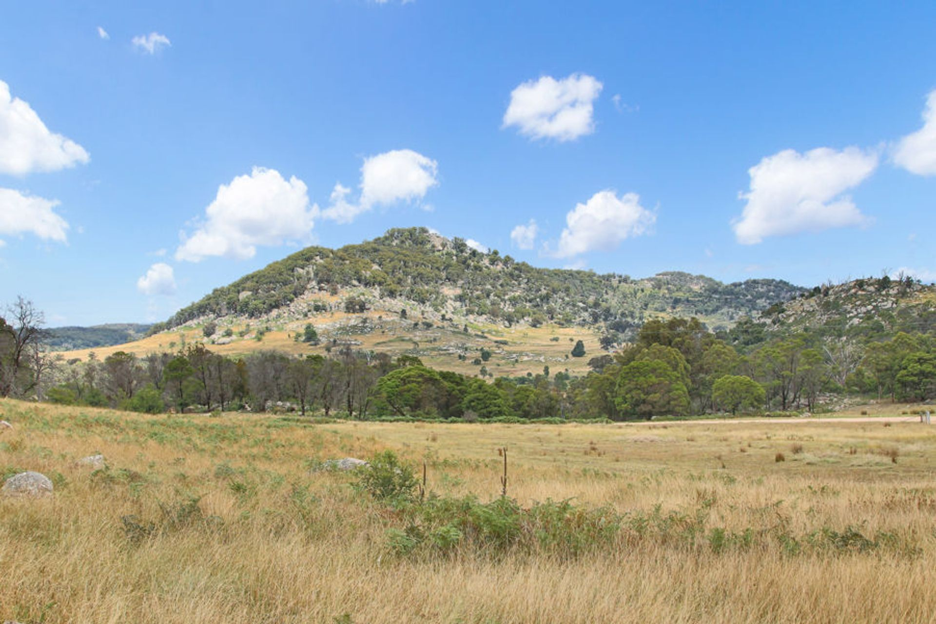 146 Kildare Road, Tenterfield, NSW  2372