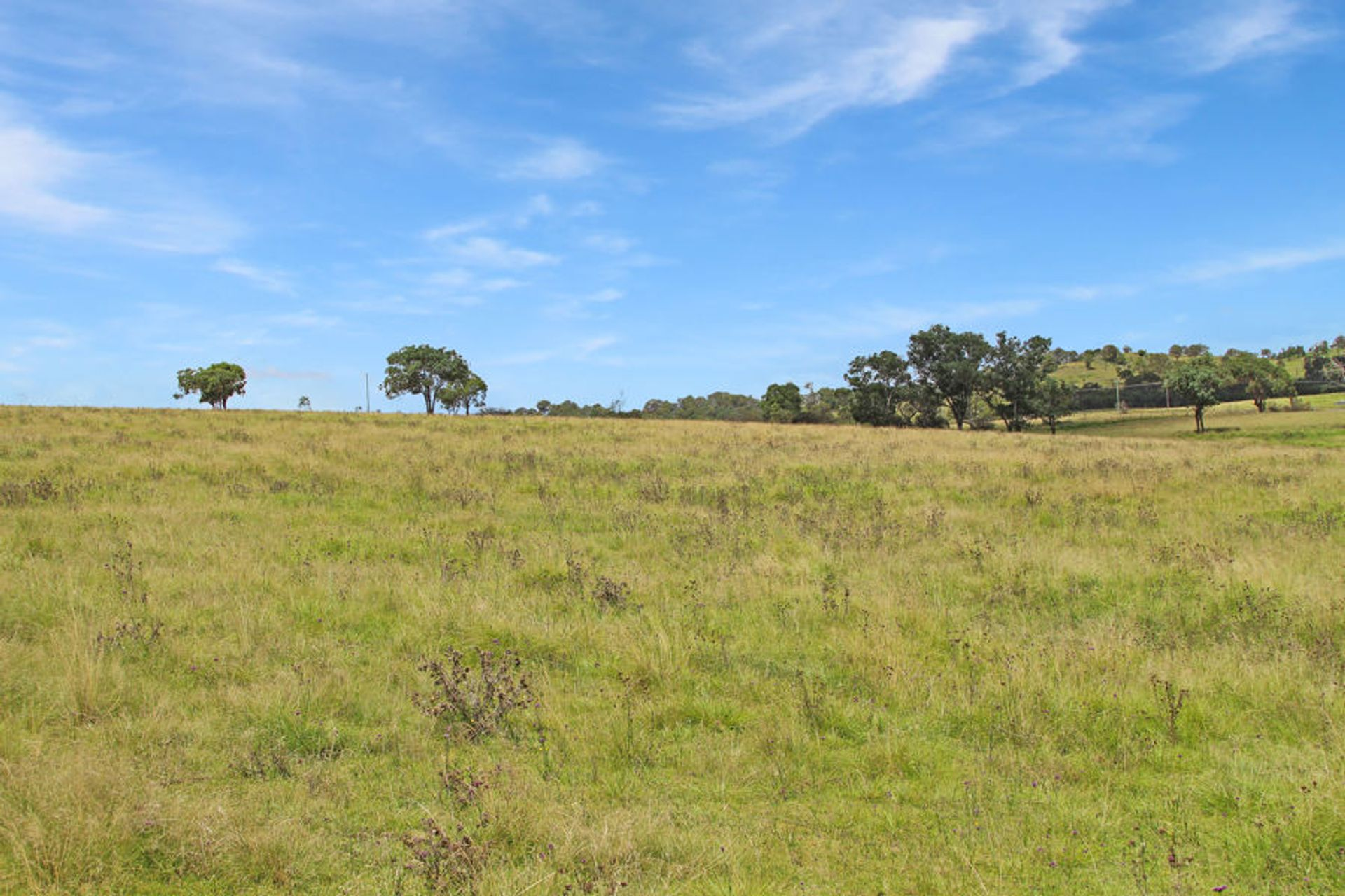 47 Bryans Gap Road, Tenterfield, NSW  2372