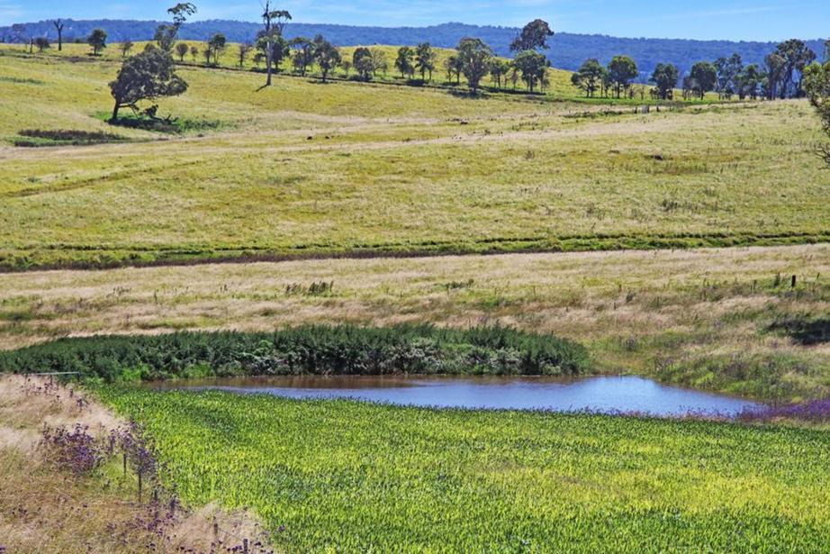 79 Bryans Gap Road, Tenterfield, NSW 2372