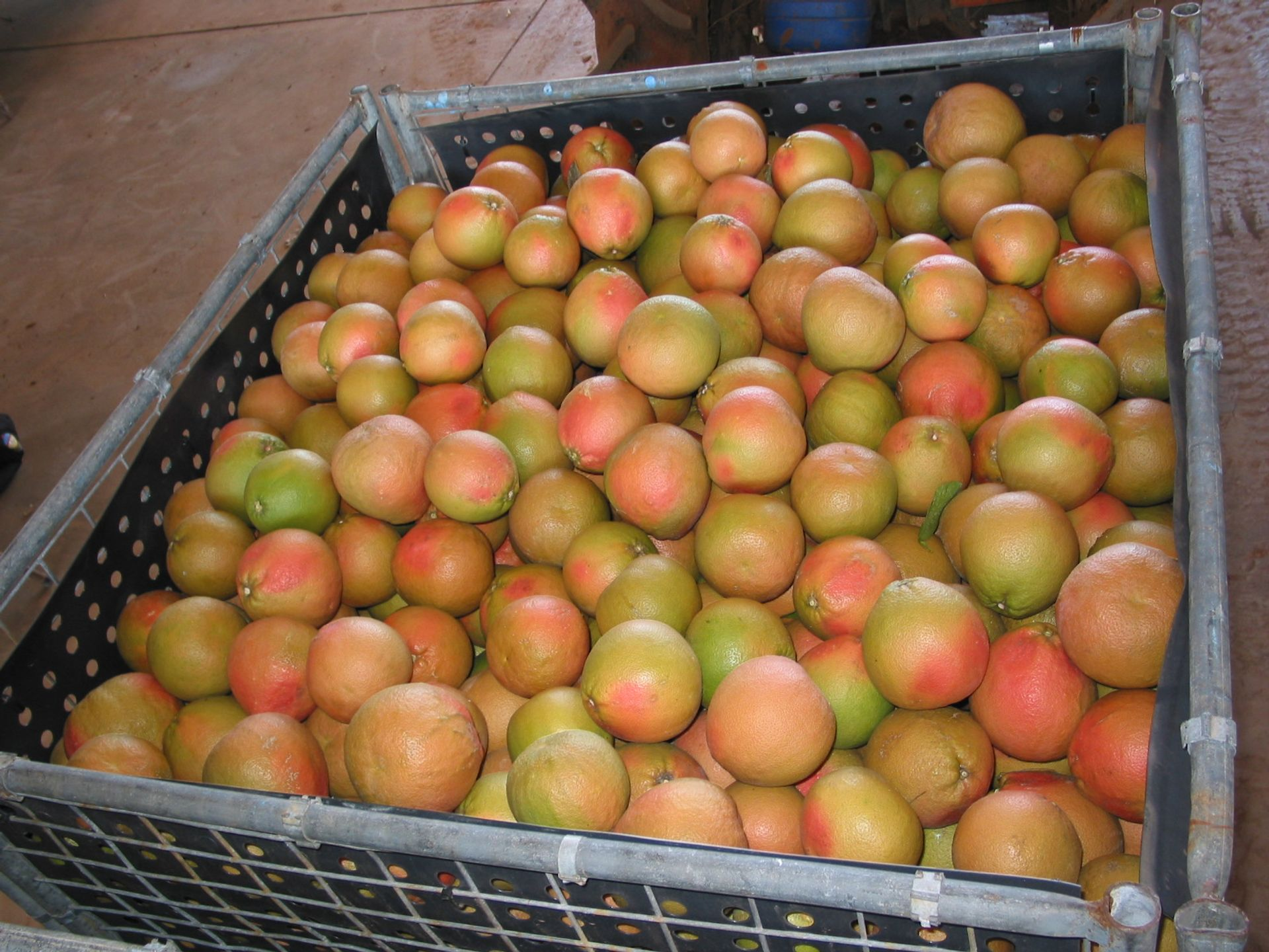 Kimberley Produce, Lots 11 & 601 Weero Road, Kununurra, WA  6743