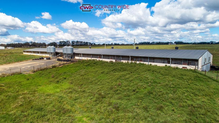 Rural Property & Farms for Sale - 28 Whitmore Road - Farm Property