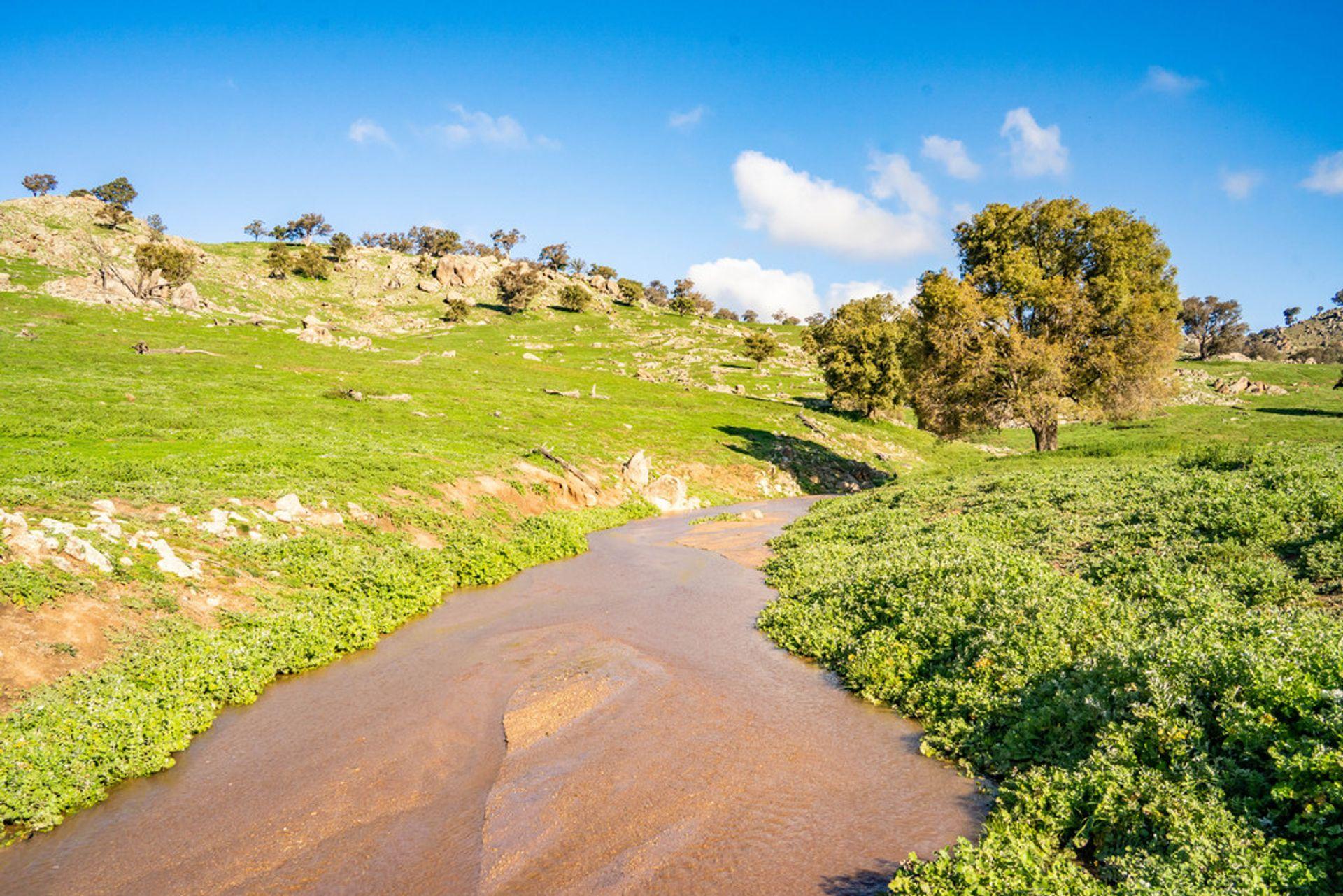 635 Decca Road, Bigga, NSW  2583