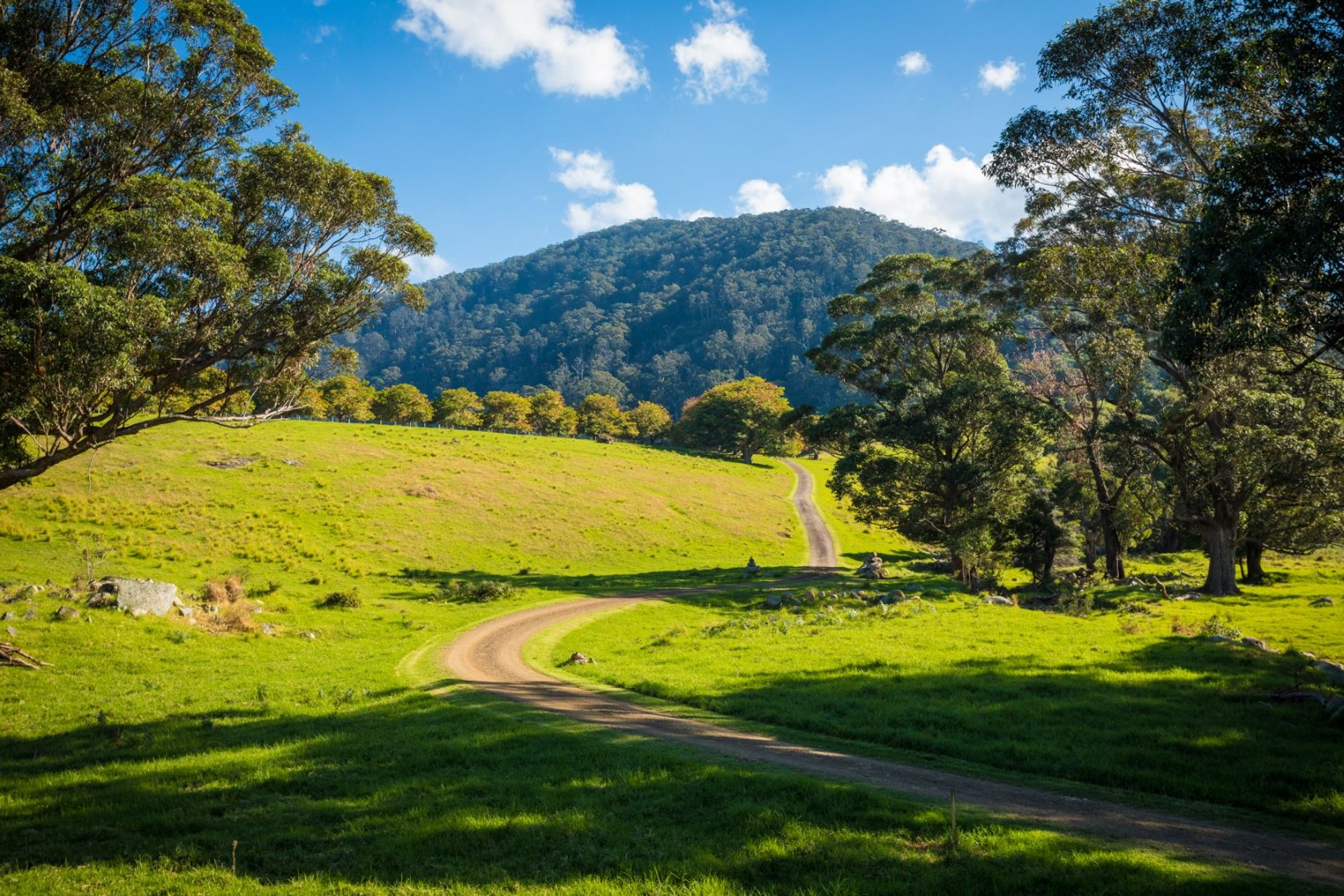 49 Mount Dromedary Trail Tilba Tilba - NSW