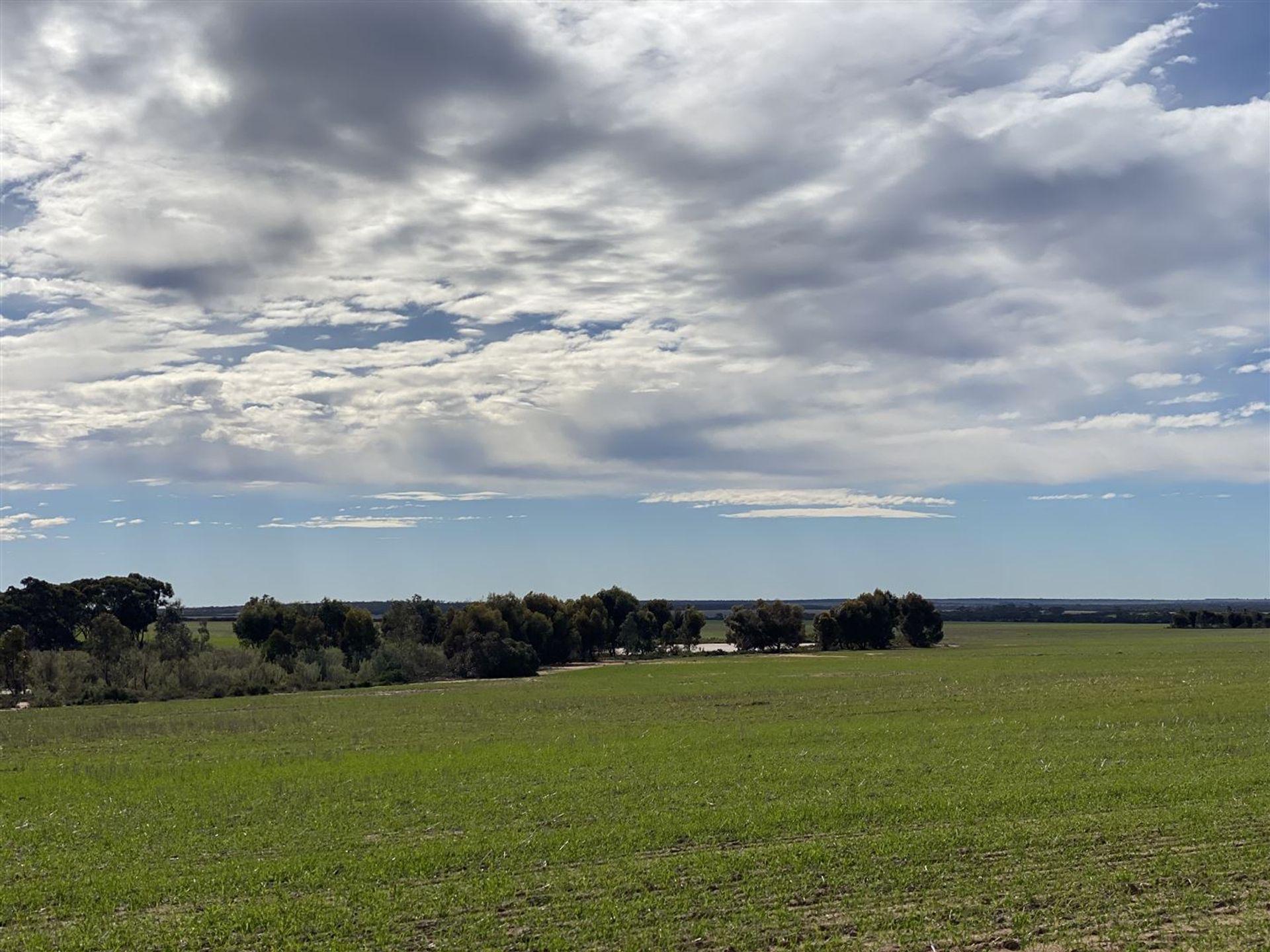 . 'Green Wood', Cleary, WA  6472