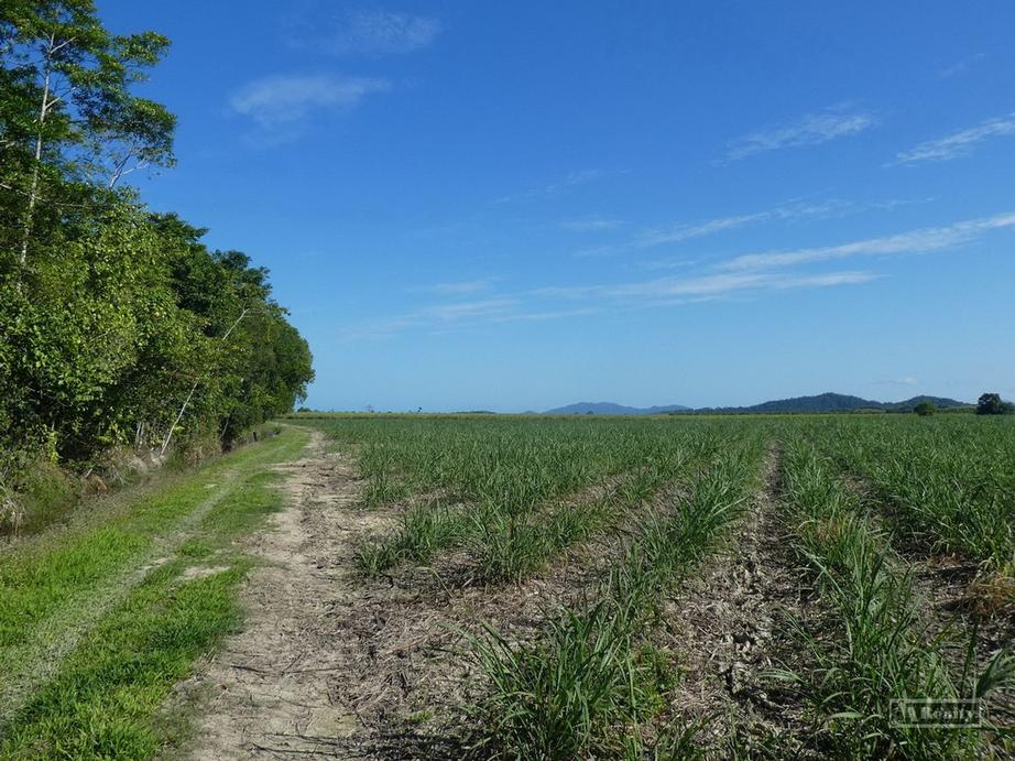 Address available by request, Cowley QLD