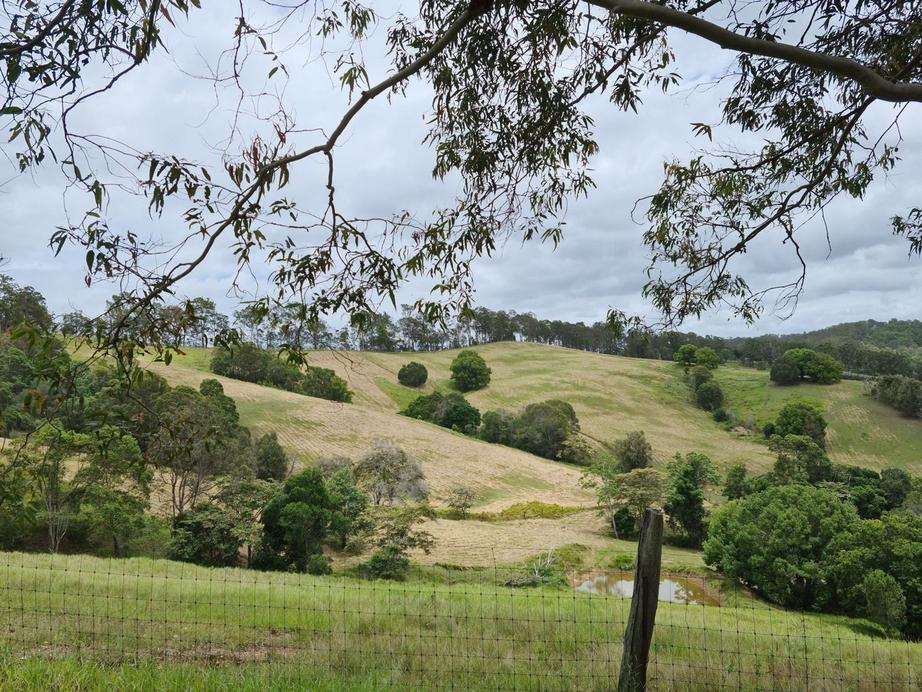 Rural Property & Farms for Sale - Lot 2 Phillips Road - Farm Property