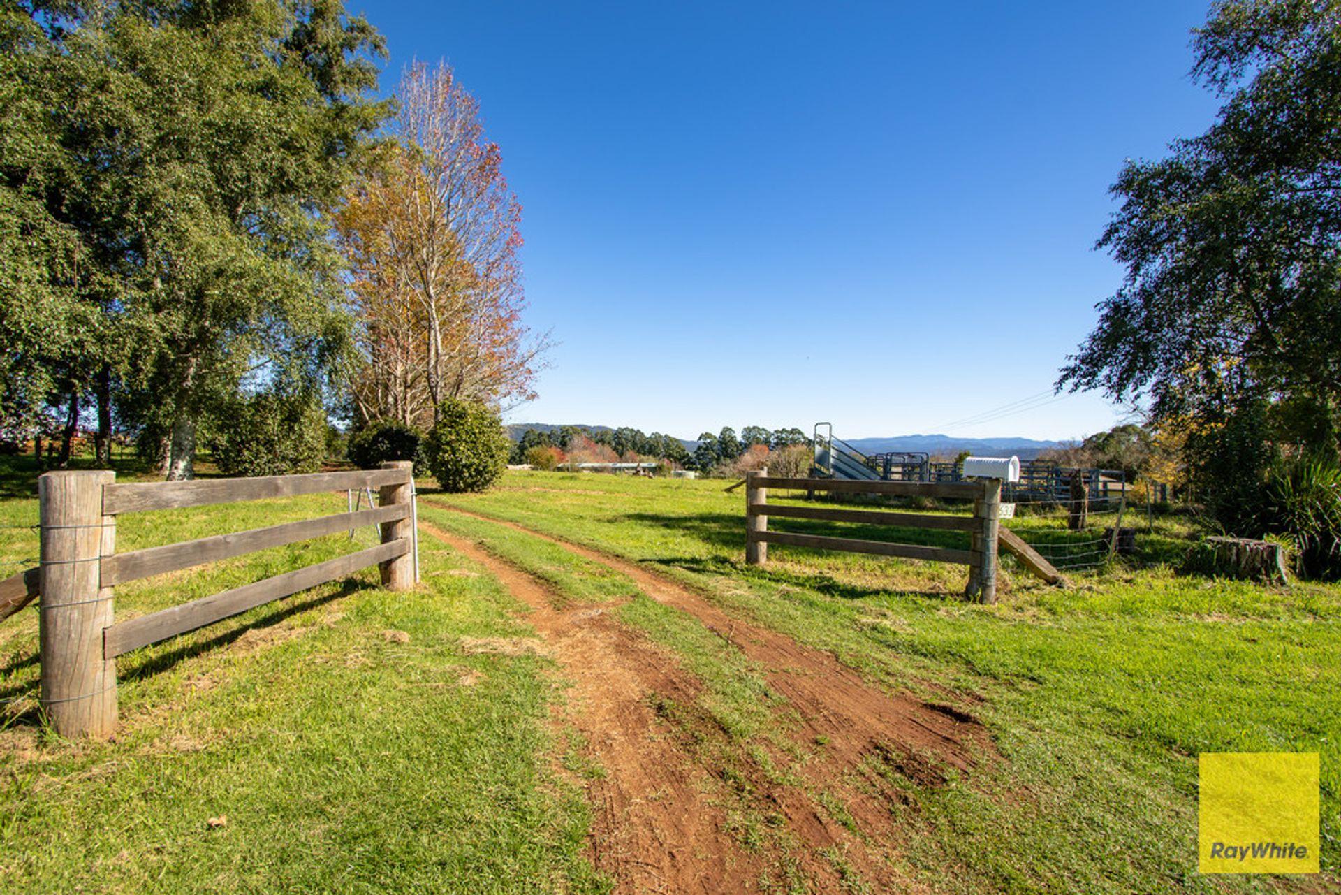 633 Old Coast Road,, Dorrigo North, NSW  2453