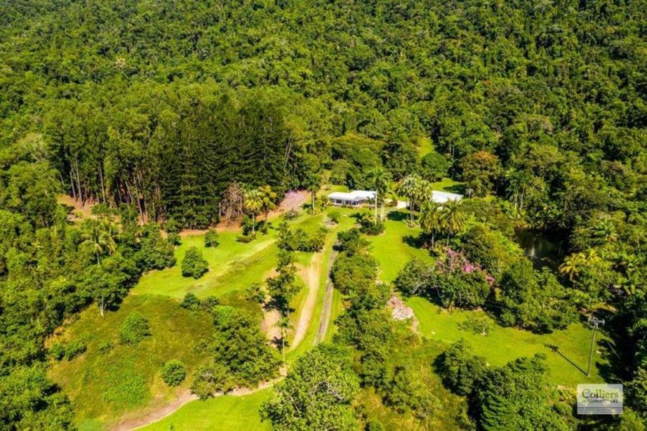 Rural Property & Farms for Sale - 296 Finlayvale Road - Farm Property