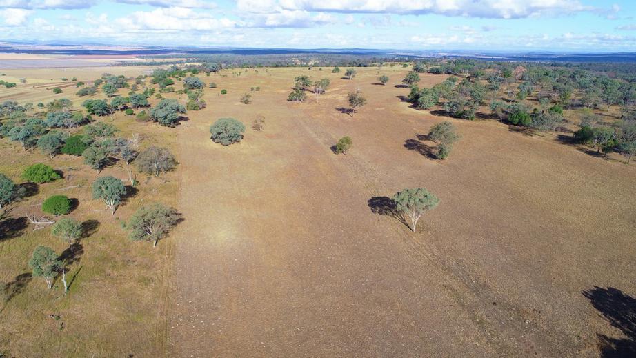 Rural Property & Farms for Sale - 150 Millbrook Back Plains Road - Farm Property