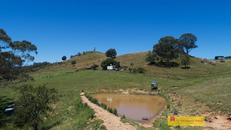 Rural Property & Farms for Sale - 756 Upper Botobolar Road - Farm Property