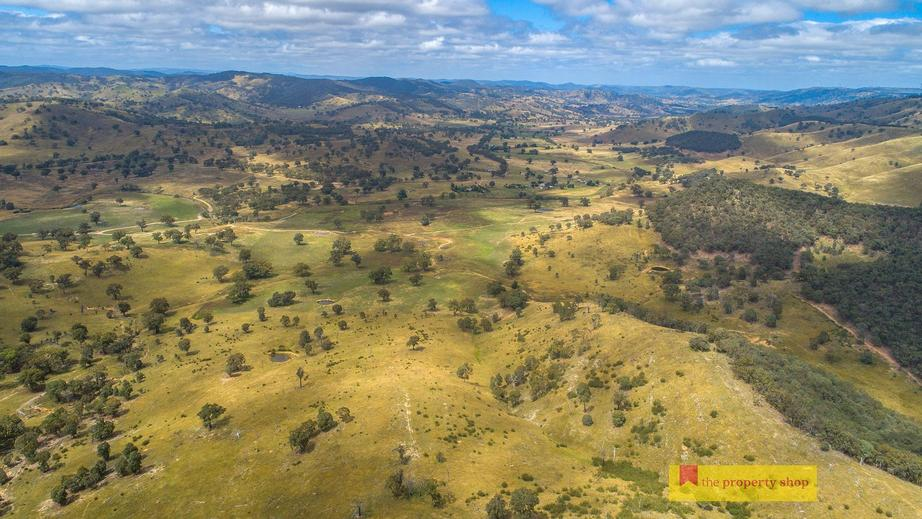 Rural Property & Farms for Sale - 1094 Aarons Pass Road - Farm Property