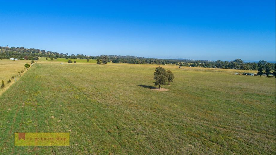 Rural Property & Farms for Sale - 219 Lowes Peak Road - Farm Property