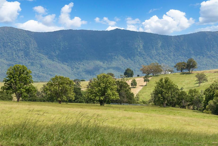 Rural Property & Farms for Sale - 77 Back Creek Road - Farm Property