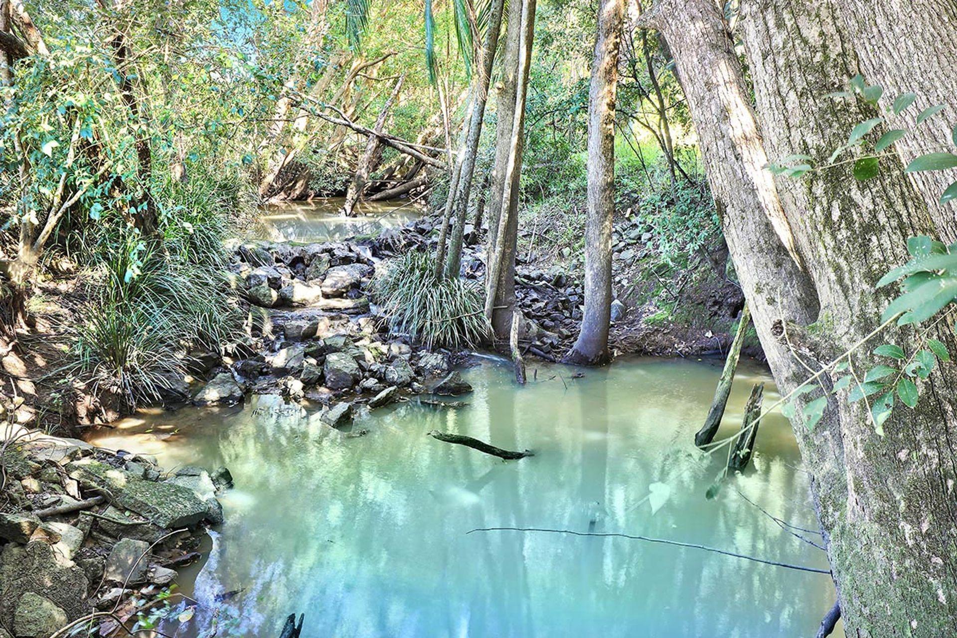 190 McGilchrist Road Palmwoods - QLD