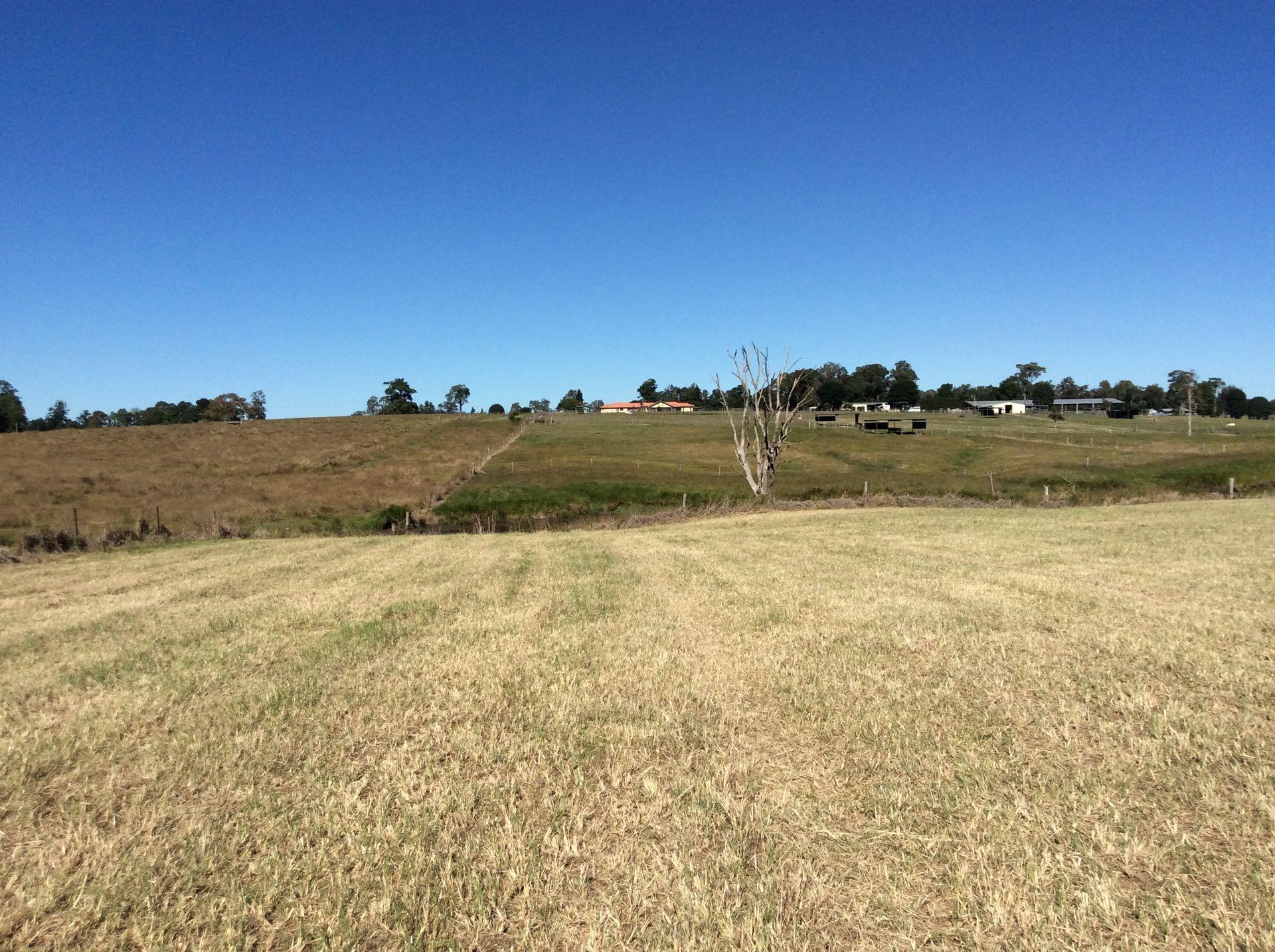 111 Bergins Pocket Road, Kandanga, QLD  4570
