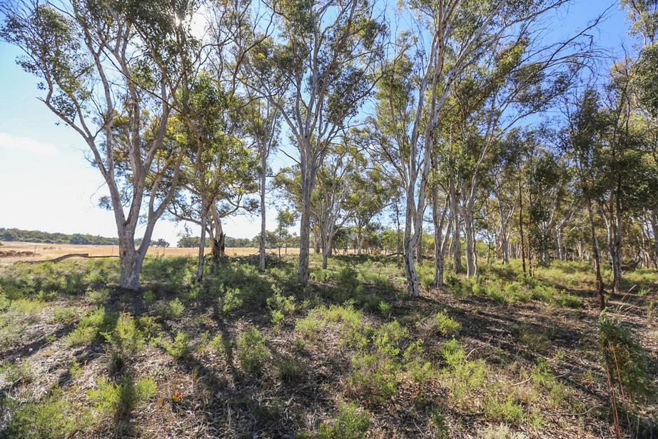 1339 Old Plains Road, Wattening, Toodyay WA