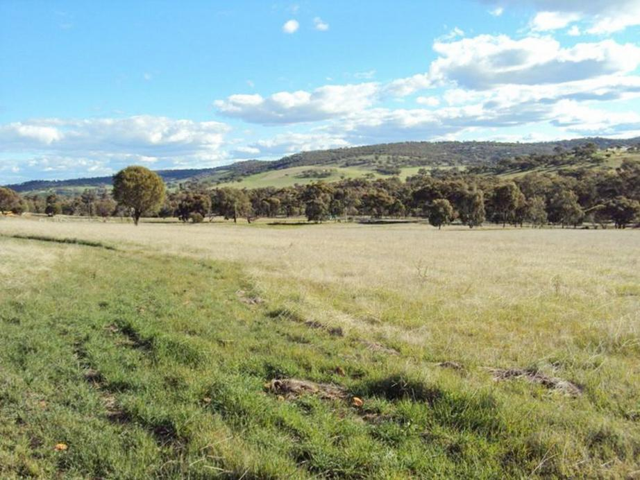 Address available by request, Toodyay, WA 6566